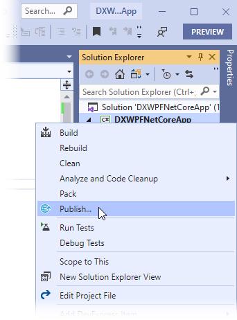 如何部署 .NET 5 应用程序教程图1