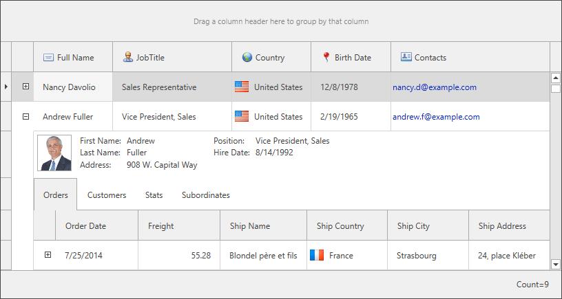 DevExpress WPF入门教程之应用程序主题图-part2-2