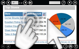 WinRT Viewer for Reporting Services界面预览:WinRT Viewer for Reporting Services效果预览