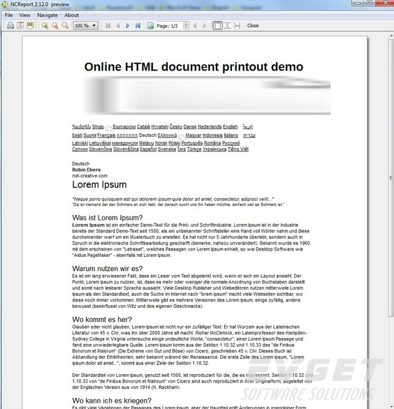 NCReport界面预览:online html text