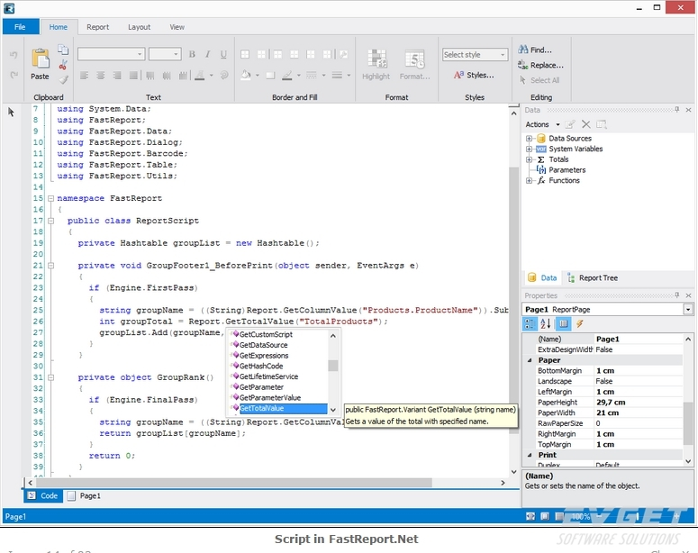 FastReport.Net界面预览:script in fastreport.Net