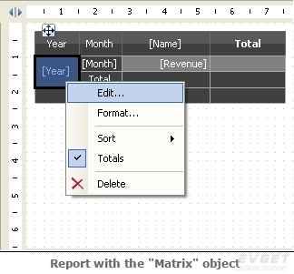 "report with the ""matrix"" object"