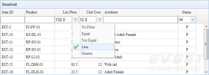 DataGrid Filter Row