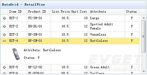 DataGrid - DetailView