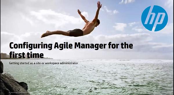Agile Manager:使用设置