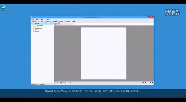 Navicat Report Viewer:产品介绍