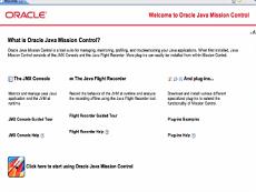 Java Mission Control授权购买