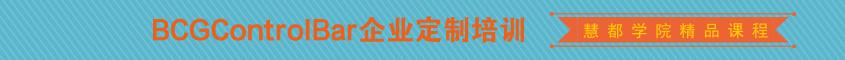 BCG企业定制培训