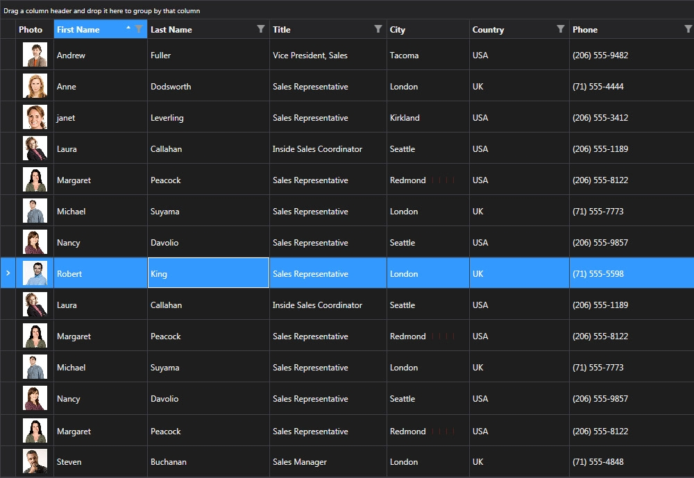 Telerik UI for WPF界面预览:
