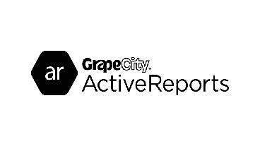 ActiveReports入門視頻教程【英文版】