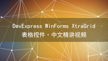 DevExpress WinForms XtraGrid 表格控件教学视频