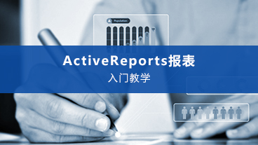 ActiveReports 入门教学视频