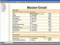 Stimulsoft Reports.Wpf 在报表中使用业务对象(Business Objects)