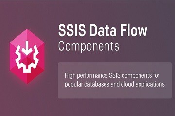 SSIS Data Flow Components套包试用版下载