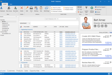 DevExpress WinForms Subscription预览:WinForms Office Inspired应用