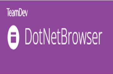 .NET集成组件DotNetBrowser基础知识示例(14)—捕获谷歌搜索按钮单击事件
