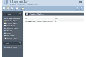 Themida预览:高级选项