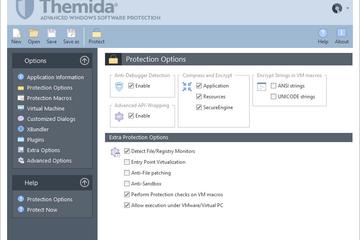 Themida预览:保护选项