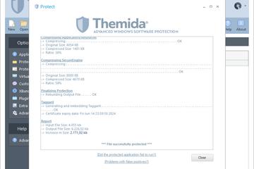 Themida预览:保护