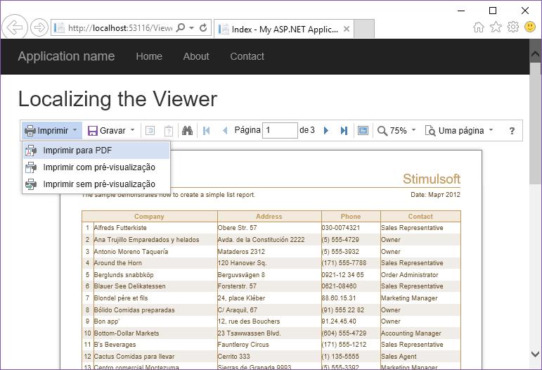 Stimulsoft ASP.NET MVC报表教程:定位查看器