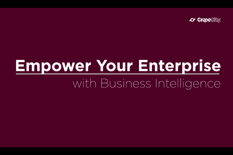 Wyn Enterprise视频教程:5分钟内创建BI仪表盘