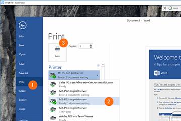 远程桌面工具TeamViewer教程:远程打印