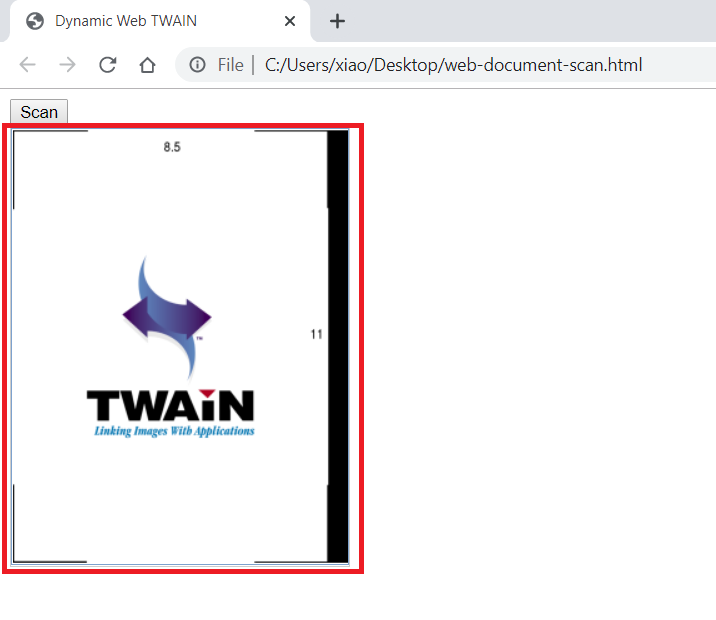 为什么Polymer无法与Dynamic Web TWAIN一起使用?