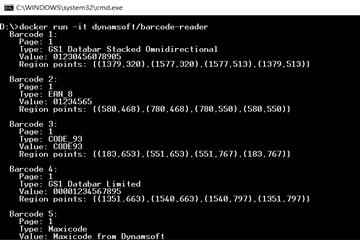 Dynamsoft Barcode Reader教程:如何使用Dynamsoft Java条形码阅读器扫描多个条形码