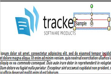 PDF-XChange Editor使用教程:如何更改标注工具注释中箭头的位置?