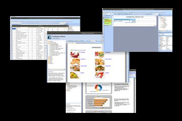 适用于所有Delphi的FastReport VCL v6.7试用下载