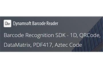 Dynamsoft Barcode Reader教程:如何在Windows 10上的C ++中制作DotCode网络摄像头扫描仪