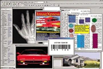 图像处理工具包ImagXpress用户指南:如何显示图像