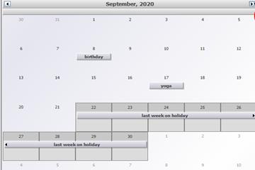 MindFusion.Diagramming for WinForms使用教程:在Java Swing中规定日期结束的月历