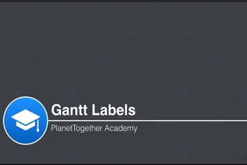 PlanetTogether APS视频教程:快速管理甘特标签