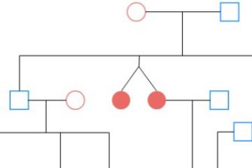 Visual Paradigm预览:谱系图