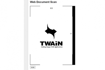 Dynamic Web TWAIN教程:如何使Dynamic Web TWAIN与Polymer Shadow DOM一起使用