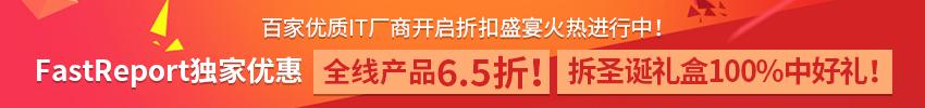 FastReport 正版授权 年终促销6.5折