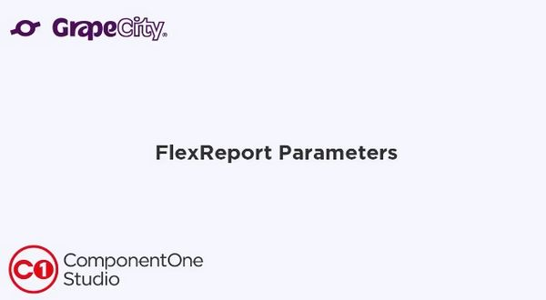 FlexReport for WinForms使用教程:添加和编辑参数