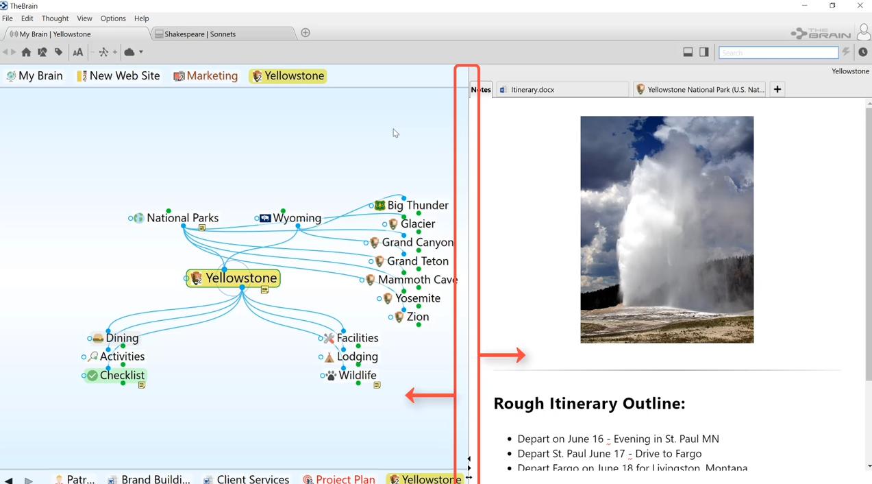 TheBrain9功能教程:标签页和窗口