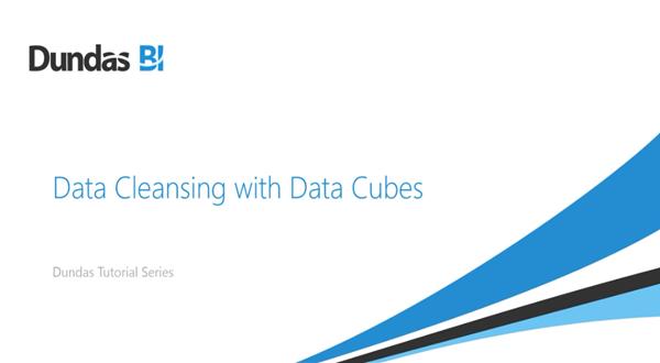 Dundas BI:数据清理与多维数据集
