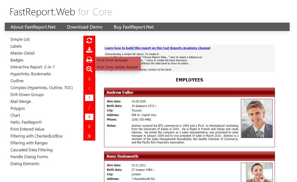 FastReport.Web for Core 中的工具栏自定义和导出设置