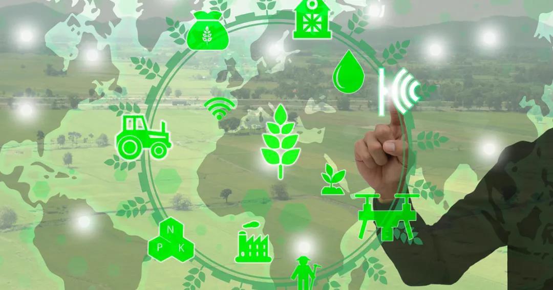 Qlik宣布与全球农业龙头阿康集团合作,助力推进全面数字化!