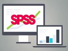 SPSS Statistics Professional授权购买