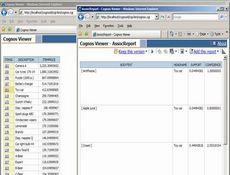 Cognos Integration Server授权购买