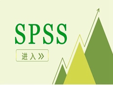 SPSS Statistics Subscription