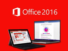 Microsoft Office 标准版