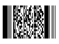 pdf417barcode