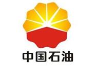 Stimulsoft Reports高级培训用户评论 中国石油
