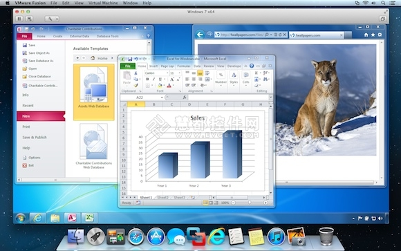 Windows程序,VMware Fusion