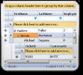 grid控件,webgird,网格,表格控件